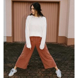 American Apparel Chicago Pants in Cocoa Bean